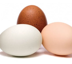 Free Range Eggs (small)