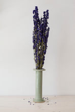 Dried Delphinium Bouquet