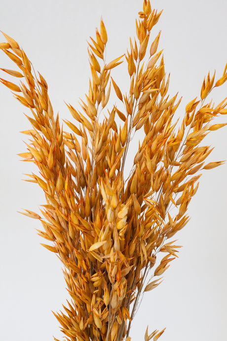 Thoughtful Gifts - GARDEN STATE CANDLES
