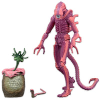 Aliens – 7″ Scale Action Figure – Xenomorph Warrior Arcade Appearance NECA 51629