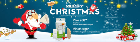 VIVO 206 Digital Hearing Aid