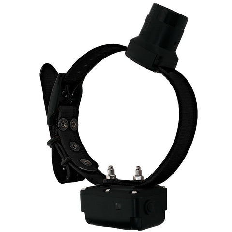 Image of DT Systems dog training beeper collar stimulation system