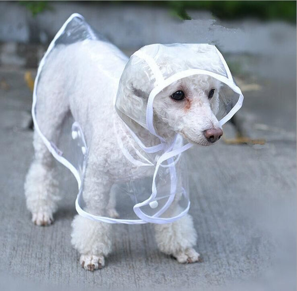 """Koko"" Transparent Dog Raincoat - Stardust Hut"