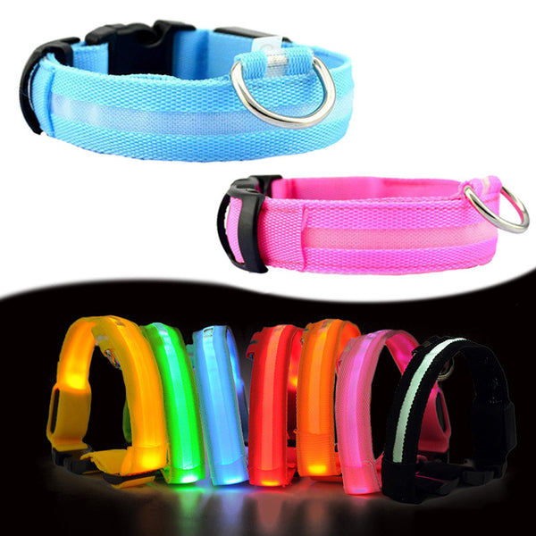 Nala Nylon LED Pet Dog Collar - Stardust Hut | Pet Collar | Pet Accessories