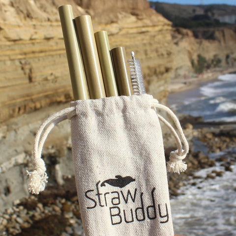 Straw Buddy Bamboo Straw Pack - Cottage Shop