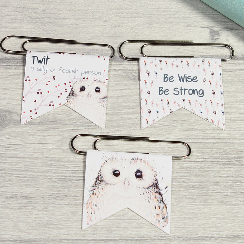 Winter Owls Stationery Bundle
