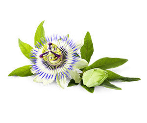 Passion Flower 4:1 Extract