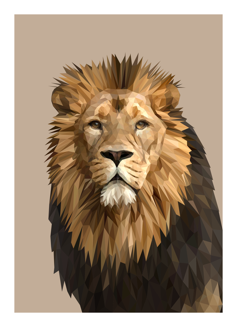 African Lion  |  Limited Edition