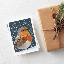 Christmas Card Box Set x 8  |  British Wildlife