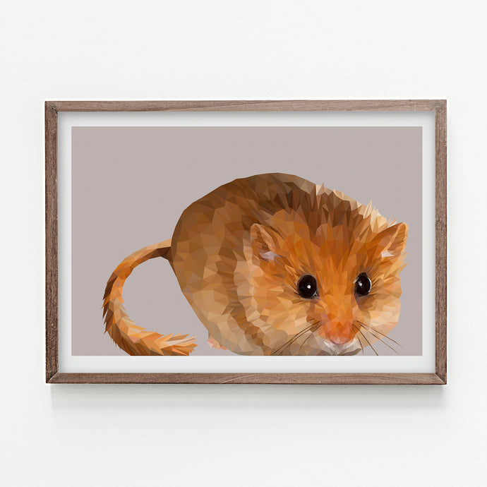 Hazel Dormouse  |  Feather