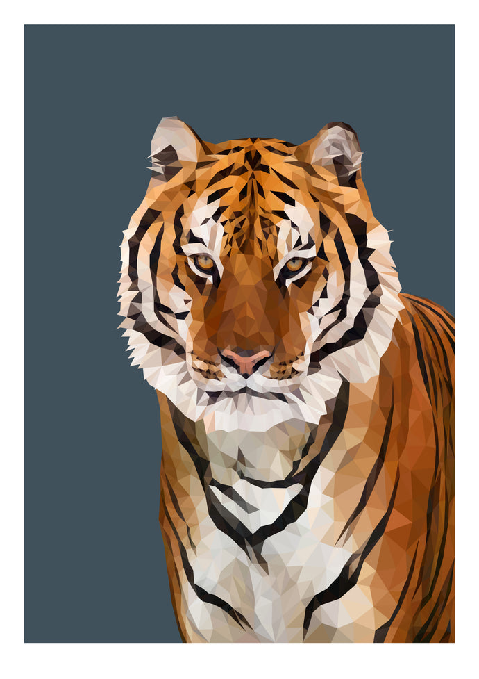 Bengal Tiger Limited Edition