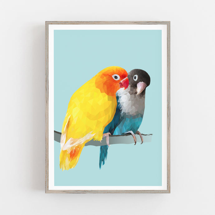 Lovebirds  |   Clearwater