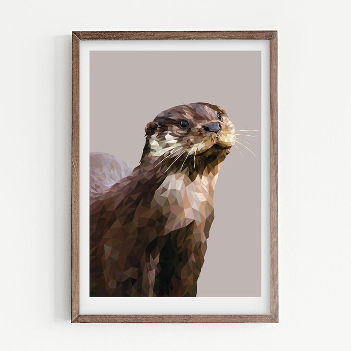 European Otter  |  Feather