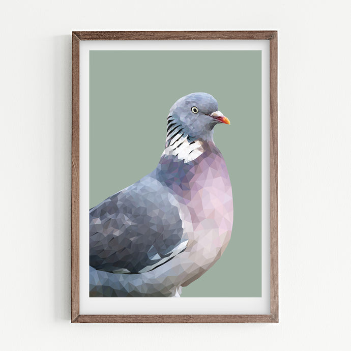 Wood Pigeon |  Laurel