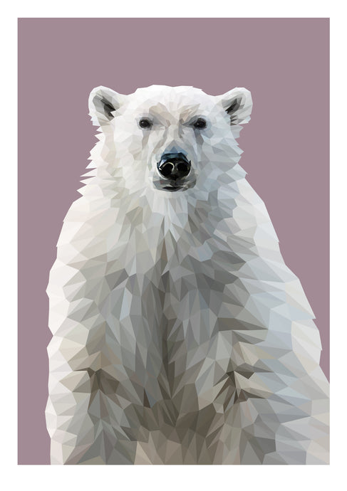 Polar Bear Limited Edition