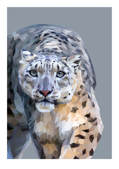 Snow Leopard  |  Limited Edition