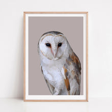 Barn Owl |  Feather