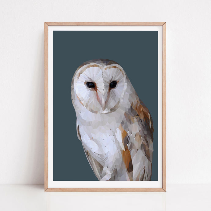 Barn Owl |  Witching Hour