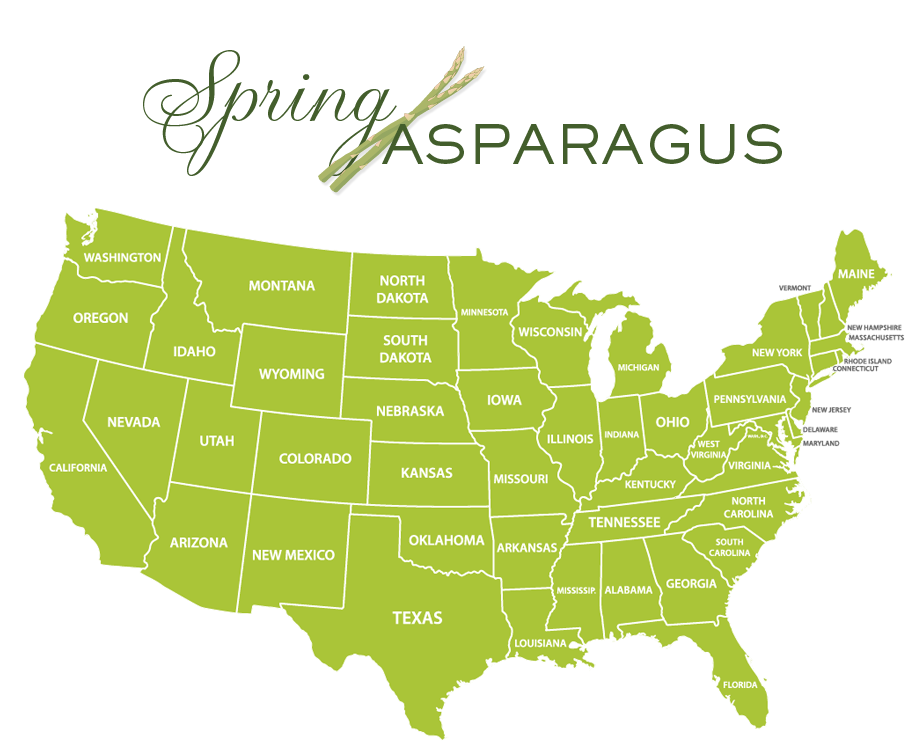 Jessica Haas Designs - Where to find asparagus locally in spring