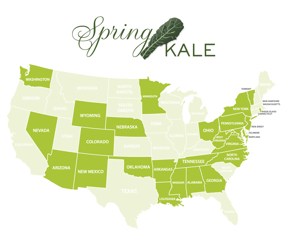 Jessica Haas Designs- Where to find kale locally in spring