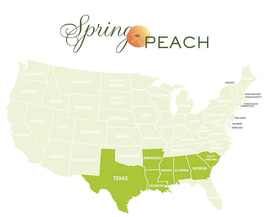 Jessica Haas Designs- Where to find peaches locally in spring