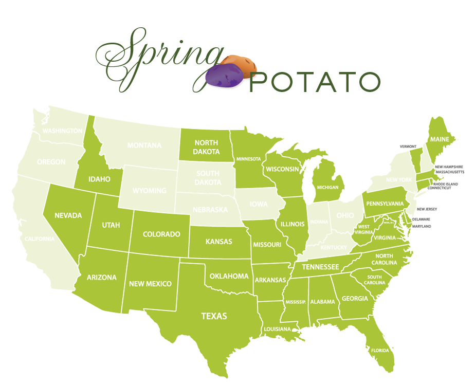 Jessica Haas Designs- Where to find potatoes locally in spring