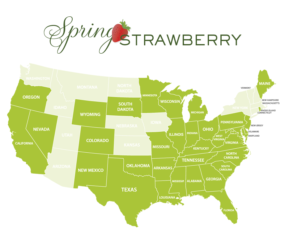 Jessica Haas Designs- Where to find strawberries locally in spring