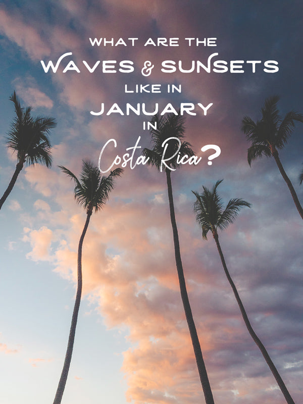 What are the waves and sunsets like in January in Costa Rica. By Kristen M. Brown, Samba to the Sea.