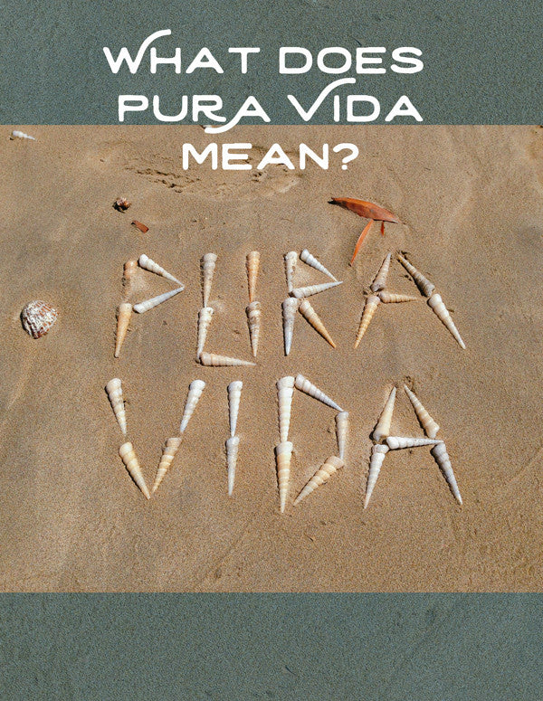 What does Pura Vida mean? Pura Vida unicorn shells on the beach in Costa Rica. Written by Kristen M. Brown, Samba to the Sea at The Sunset Shop.