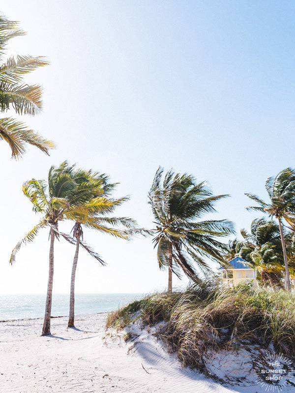 Key Biscayne beach wit palm trees and lifeguard house photographed in the morning sun. Photographed by Kristen M. Brown of Samba to the Sea for The Sunset Shop.