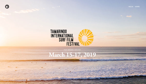 Tamarindo International Surf Film Festival. Aerial wave photograph by Kristen M. Brown Samba to the Sea.