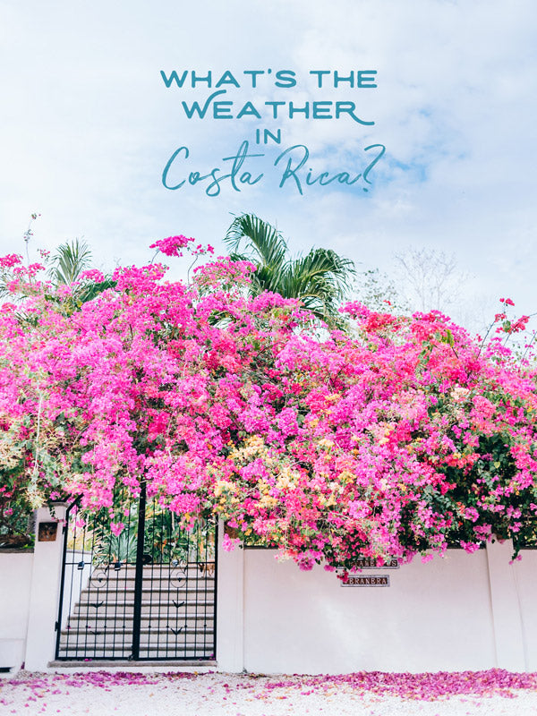 What's the weather in Costa Rica? By Kristen M. Brown of Samba to the Sea for The Sunset Shop.