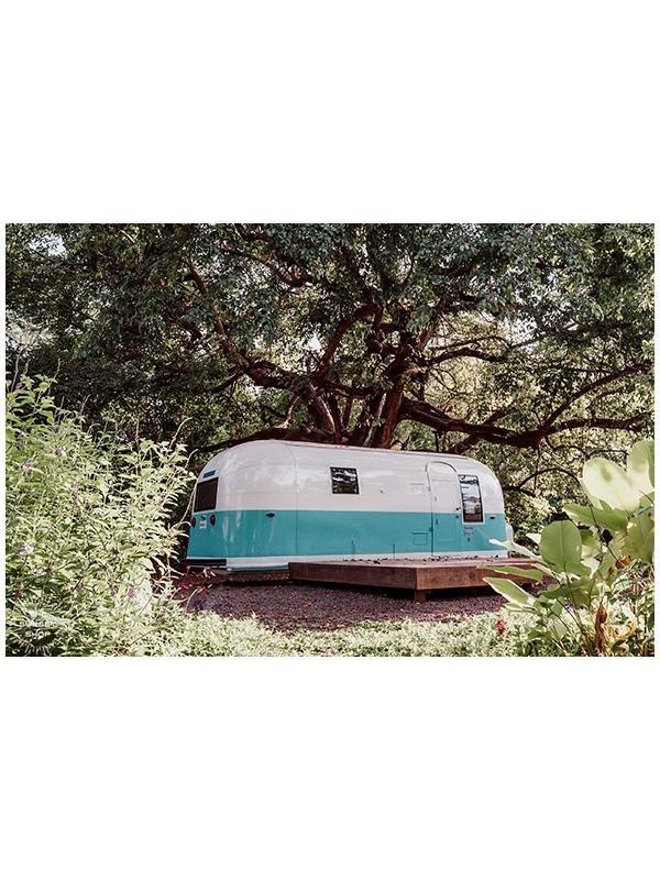 "It's all about those simple things in life...an Airstream, a jungle garden like this, dreamy waves down a beach path, some magical sunsets and you're all set.   White and turquoise Airstream Land Yacht Trade Wind parked under a magical tree in Playa Guiones / Nosara, Costa Rica. ""Airstream Dreaming"" photographed by Kristen M. Brown, Samba to the Sea for The Sunset Shop."