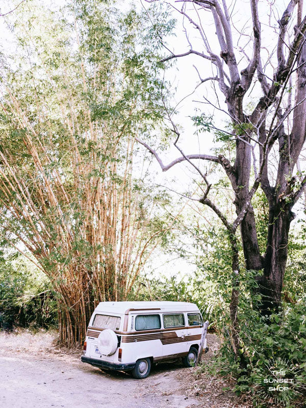 VW bus under bamboo in Nosara, Costa Rica. Photographed by Kristen M. Brown of Samba to the Sea for The Sunset Shop.