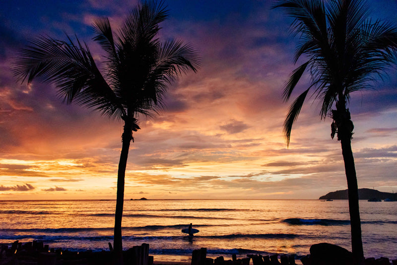 Between Two Palms sunset print by Samba to the Sea at The Sunset Shop. Image of a surfer walking on the beach during a stunning sunset in Tamarindo, Costa Rica.