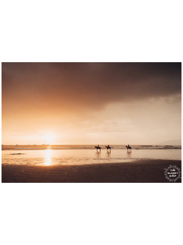 Horses on the beach during a beautiful golden sunset in Costa Rica. Photographed by Samba to the Sea for The Sunset Shop.