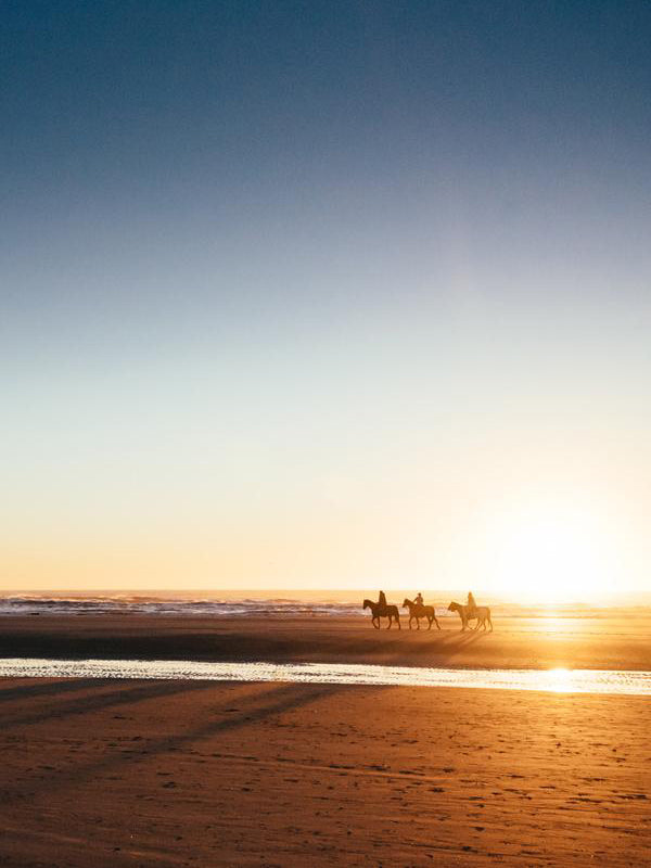 "Horseback ride on the beach in Cannon Beach, Oregon during a golden sunset. Horseback riding on the beach by Haystack Rock. ""Cannon Beach Gold"" golden beach sunset print by Kristen M. Brown, Samba to the Sea."