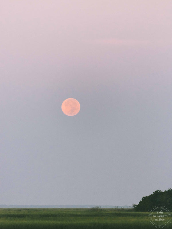 "Good night moon! 😍🌝🌅 It definitely is worth waking up before sunrise when you get to see this beautiful sight, the full moon glowing pink as it sets over the marsh in Savannah, GA. ""Full Moon Marsh"" photo by Kristen M. Brown of Samba to the Sea for The Sunset Shop."