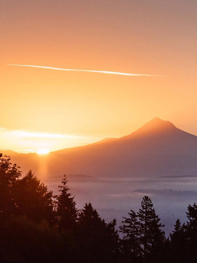 "Golden sunrise over Mount Hood from downtown Portland, Oregon. ""Mountain Morning Greeting"" sunrise print by Kristen M. Brown, Samba to the Sea."