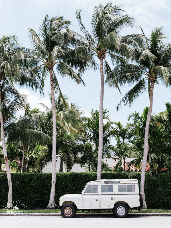 Vintage Land Rover Defender parked in front of palm trees in Palm Beach, Florida. Land Rover photo print by Kristen M. Brown of Samba to the Sea, available at The Sunset Shop