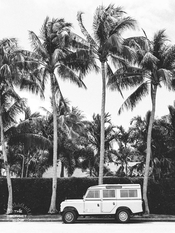 Black and white photo print of a vintage Land Rover Defender parked in front of palm trees in Palm Beach, Florida. Land Rover photo print by Kristen M. Brown of Samba to the Sea, available at The Sunset Shop