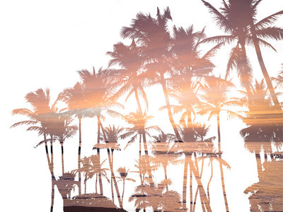 Palm trees infused with a sunset, double exposure print.  By Samba to the Sea at The Sunset Shop.