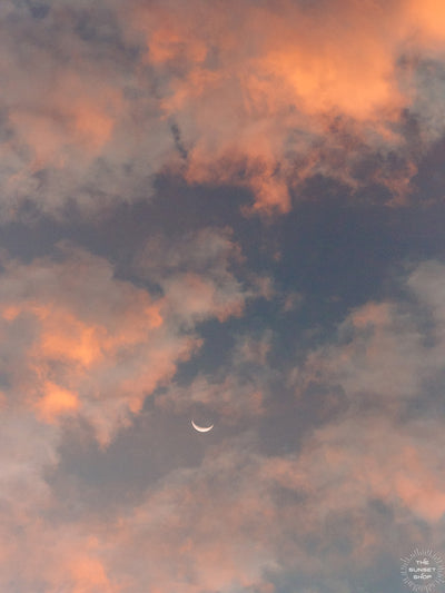 Crescent moon against a cotton candy pink sunrise sky in Savannah Georgia. To the Moon and Back II crescent moon print by Samba to the Sea at The Sunset Shop.