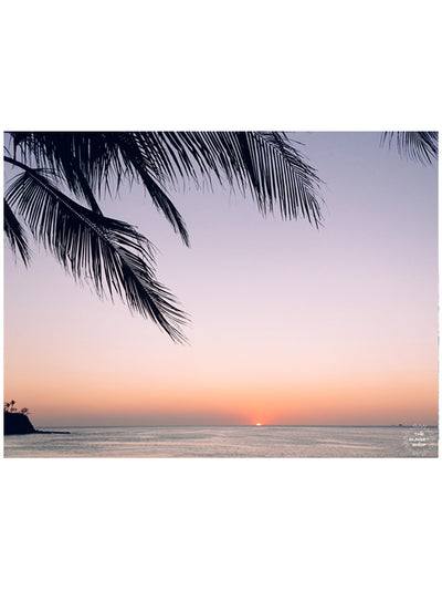 Beautiful palm tree silhouette with an ombre sunset sky over the ocean in Costa Rica. Photographed by Samba to the Sea for The Sunset Shop.