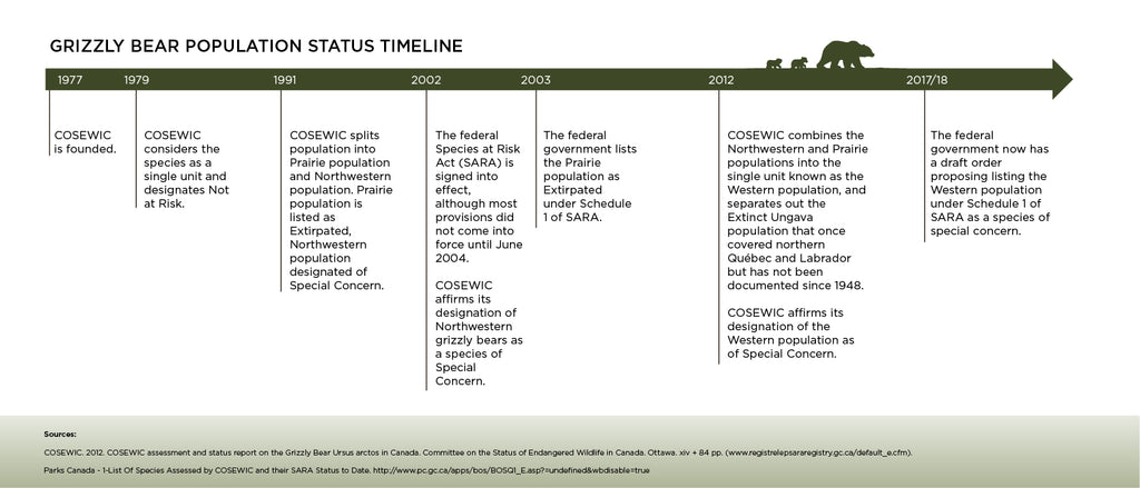 Grizzly Bear Status Timeline COSEWIC and SARA