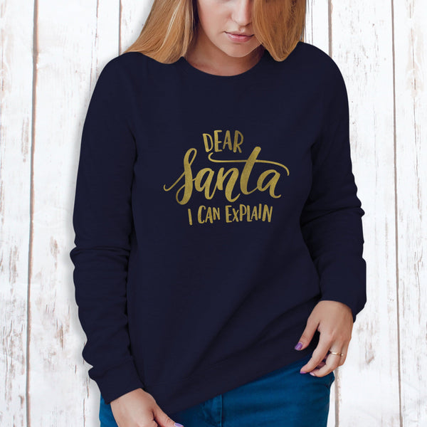 Ladies Christmas Jumper - Dear Santa I Can Explain,Christmas - Betty Bramble