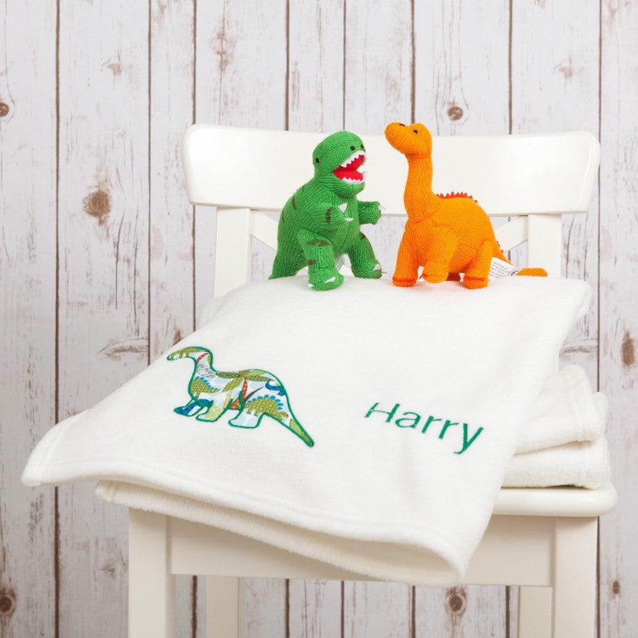 Dinosaur Baby Blanket,Baby Blankets - Betty Bramble