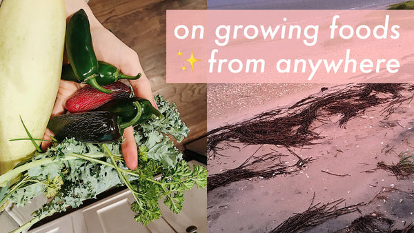 GROW YOUR OWN ∴ ∵ A DAY ON DAUFUSKIE