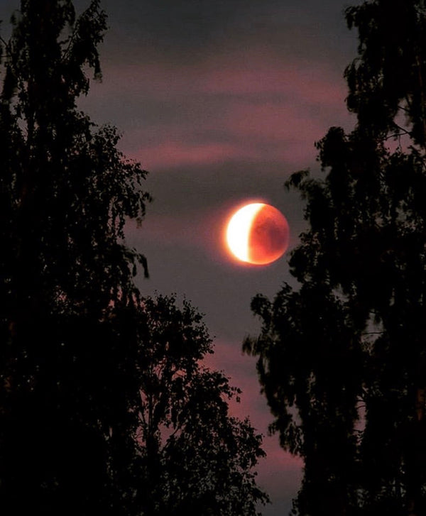~ Super Full Blood Moon + Total Lunar Eclipse on 1/20 in Leo ~