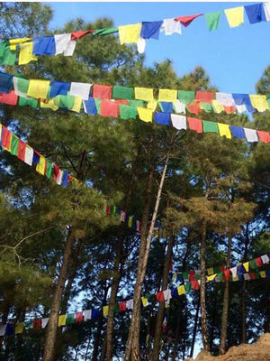 Prayer Flag (Medium)